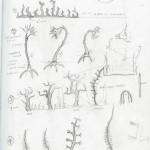 crucible plants