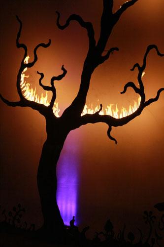 trees3_Firebird_SharleneStephens