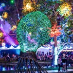 OID at Beyond Wonderland